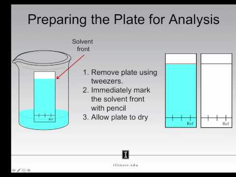 Thin Layer Chromatography - Performing An Analysis