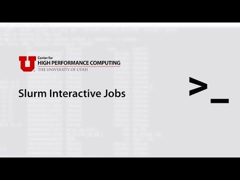 Slurm Interactive Jobs