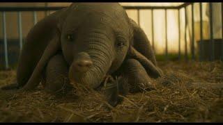 "Elefant ""Dumbo"" ist zurück im Kino"