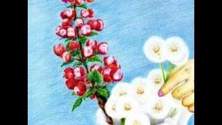 リンゴの枝とタンポポ (The Apple Branch and Dandelion) アンデルセン...