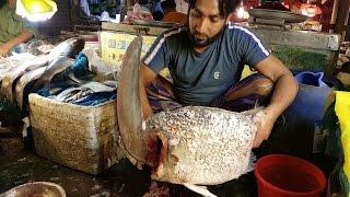 Big Black Sea Bass Fish Slice Into Pieces In Fish Market bangladesh