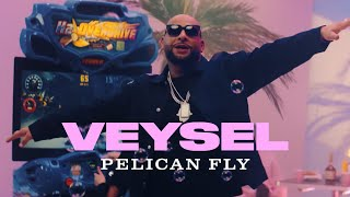 VEYSEL - PELICAN FLY (Official Video)