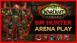 1 SHOT SPEC IN ARENA - BM Hunter PvP WoW Legion