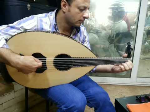 Maurice Shehata Oud ASEEL - 2664