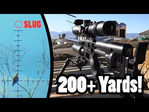 200+ Yards PCP Airgun Hunting - Pushing The Limits!