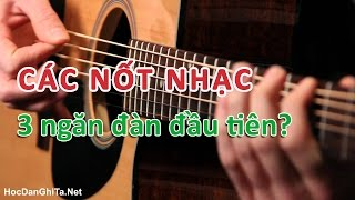 Bài 9: Các nốt nhạc trên 3 ngăn đàn đầu tiên | Cơ bản cho người mới học đàn guitar