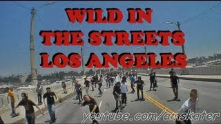 Wild in the Streets - Go Skate Day 2011 los Angeles