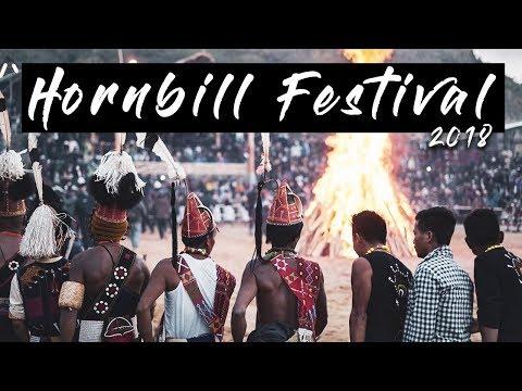 Hornbill Festival 2018, Nagaland tourism | Unity Dance | 20 feet tall bonfire | Hopping Bug