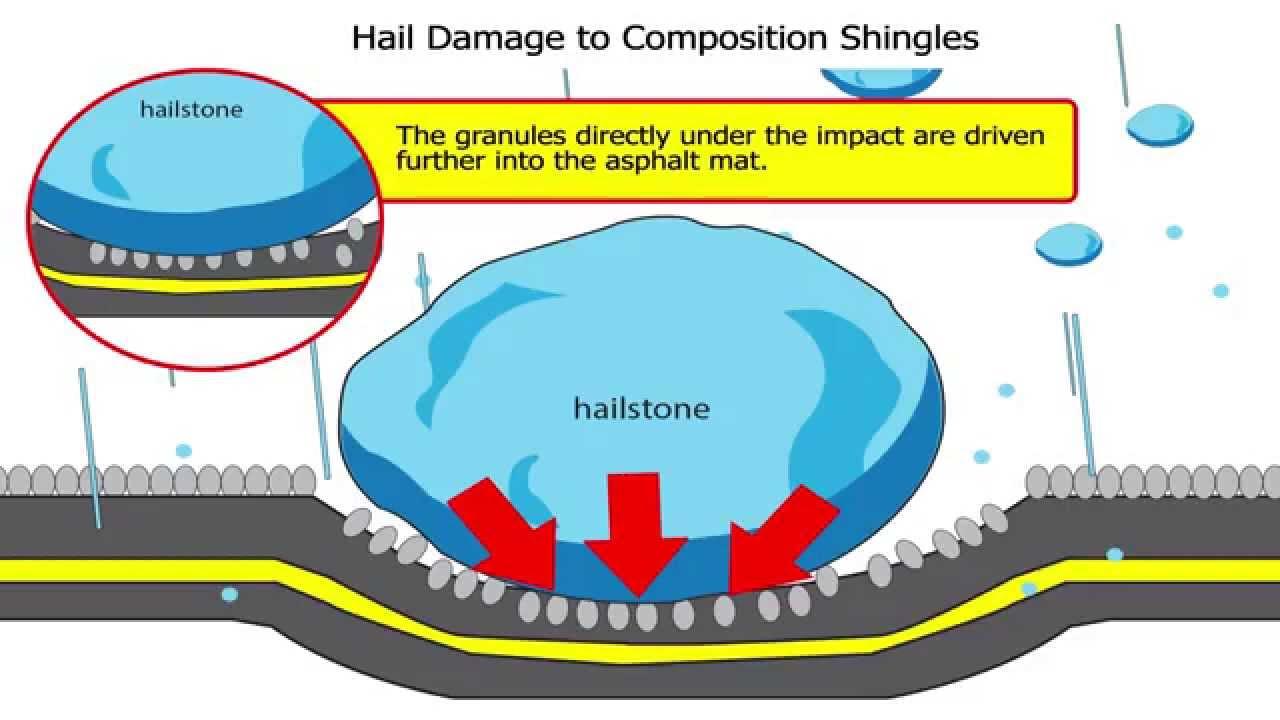 diagram hail damage wiring diagram name diagram hail damage wiring diagram option diagram hail damage [ 1280 x 720 Pixel ]