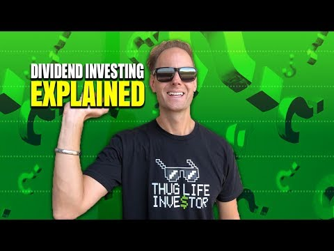 Investing $1,000 In Dividend Stocks (& More Money Insights)