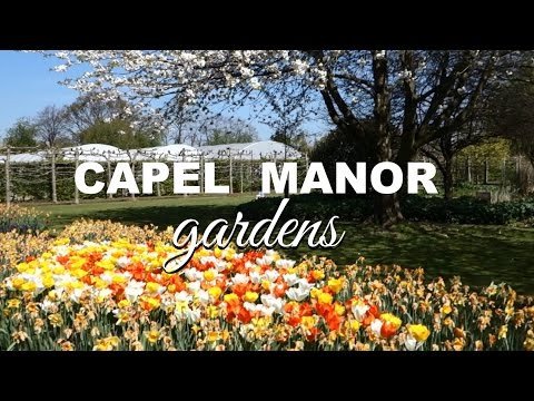 Tour of Capel Manor College gardens (Enfield, UK)