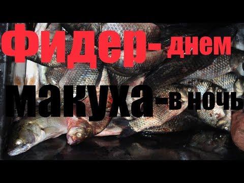 Астраханская область Селитренное !  Ловим с берега
