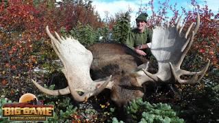 Trophy Moose Hunting In British Columbia Video