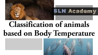 Warm blooded vs Cold blooded Animals - Types of animals based on temperature