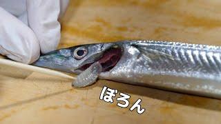 高級魚の頭に寄生する『海のダンゴムシ』が衝撃すぎた。。