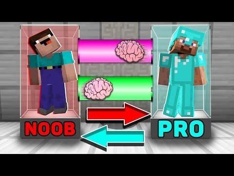 Minecraft NOOB vs PRO : BRAIN EXCHANGE! NOOB BECAME a PRO in Minecraft! Animation!