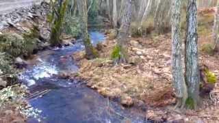 El Río Cabrón - Figueruela de Arriba (Zamora)