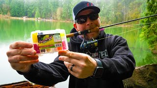 How To Fish TROUT MAGNETS In Lakes & Ponds (CHEAP & EASY!!)