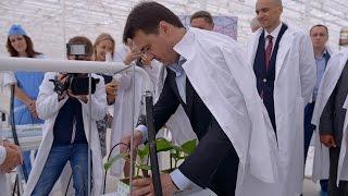 Глава региона Андрей Воробьев посетил тепличный комплекс «Луховицкие овощи»(, 2015-07-05T21:58:26.000Z)