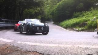Mille Miglia 2013 - day 3 - all cars - with original sound