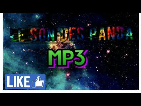 Le Son Des Panda MP3