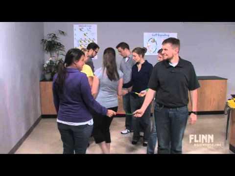 DNA and Electrophoresis Simulation - Flinn Scientific