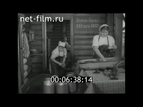 1961г. совхоз Красавино Великоустюгский район Вологодская обл