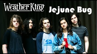 Jejune Bug by Weather King