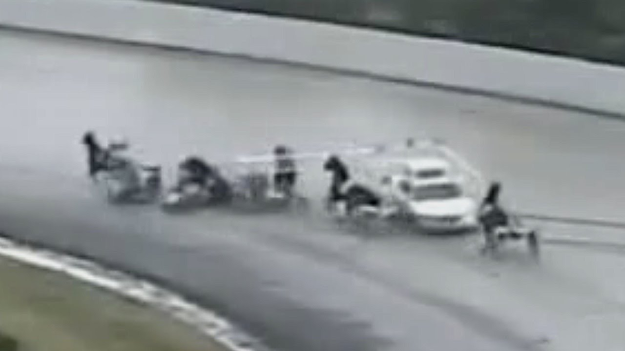 Gate Car Crashes  Horse Racing Accident Freehold Raceway