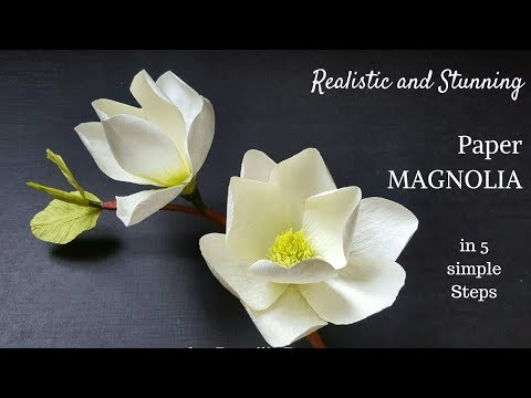 Crepe paper flower, How to make Paper Magnolia flower from crepe paper, white