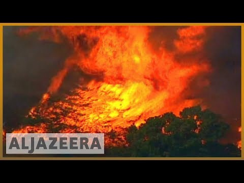 Families take EU to court over climate change | Al Jazeera English