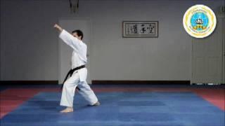 Heian Nidan - Hayashi-Ha Shito-Ryu