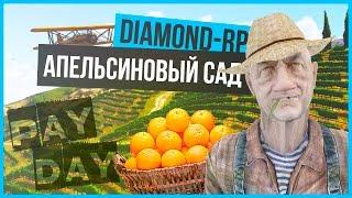Сколько зарабатывает майнинг ферма