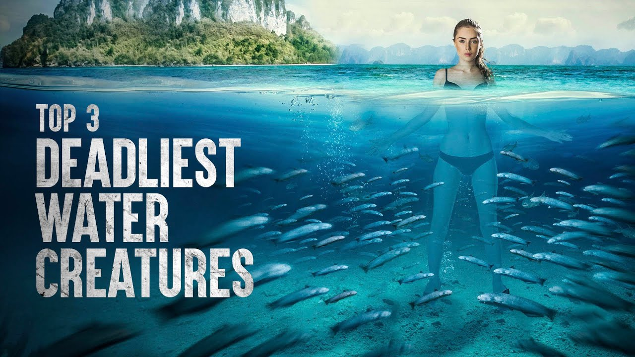 How to Survive the Deadliest Water Creatures
