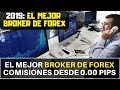 ✅ Hotforex sigue siendo el mejor Broker de Forex 2019-2020