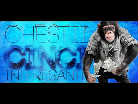 O maimuta a platit pentru sex | 5 Chestii Interesante