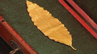 Золотой лавровый лист из короны Наполеона выставят на торги (новости)