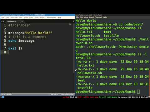 Bash Scripting 4 -- How Bash Scripts Work