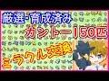【ミラクル交換】厳選・育成済みのカントーポケモン150匹配布します【ポケモンUSUM】