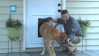 PetSafeu2014How To Install The Panel Pet Door Insert