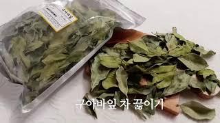 비염 구아바잎차 끓이는법 구아바차 만드는법