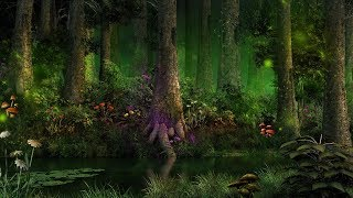1 Hour of Forest Music & Fantasy Music