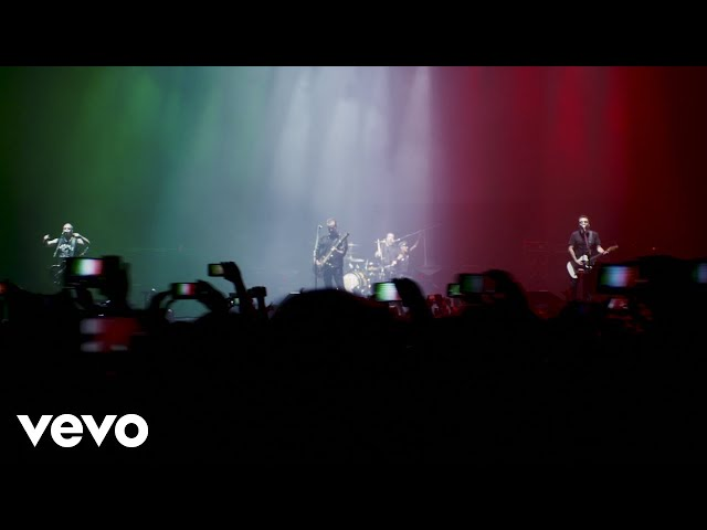 Molotov - Frijolero (Desde El Palacio De Los Deportes)