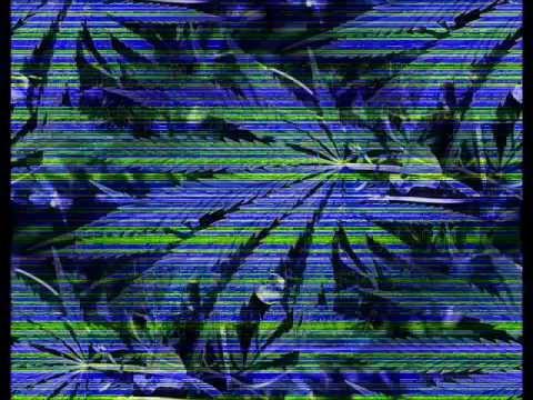 Ska-p - Legalización (Letra)