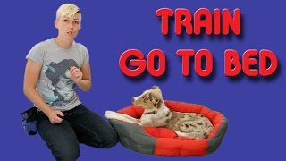 The Easiest Way To Train Your Puppy To Go To His Bed - Dog Training
