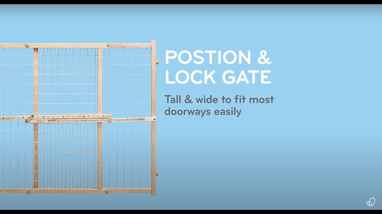 Evenflo Position /& Lock Safety Gate