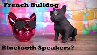 Quirky Tech! Episode :2- French Bulldog Bluetooth Speakers? Aerobull and S5 from DHGATE!
