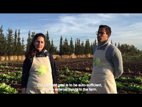 La ferme d'Ayla: Organic Horticulture in Morocco