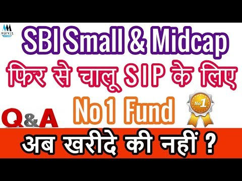 SBI Small Cap Fund | SBI Small and Mid Cap Fund Review Should You Invest ?