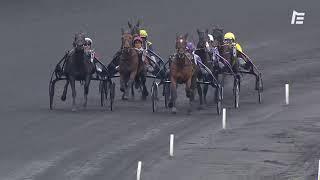 Vidéo de la course PMU PRIX PHAEDRA